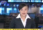 凤凰卫视报道海峰会