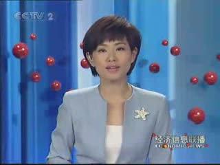 中央电视台报道海峰会